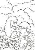 Le petit hérisson mignon voit le grand champignon Images libres de droits