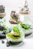 Le petit pot avec le morceau de forêt, sauvent l'idée de la terre Images stock