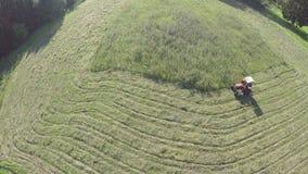 Le petit rétro vieux tracteur a coupé faire les foins l'herbe du pré d'extrémité d'été, vue aérienne banque de vidéos