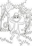 Le petit singe mignon saute ou fonctionne Photos stock
