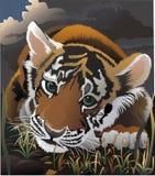 Le petit tigre manquant qui a détruit la momie de mum.lost. Image stock