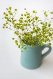Le petit vert jaune fleurit dans le broc ou la cruche bleu sur le fond blanc, vue supérieure, couleurs en pastel, style propre mi Photos stock