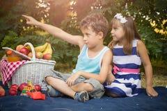 Le petits garçon et fille mignons s'asseyent sur une couverture dans l'herbe et jouent Photos stock