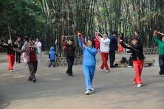 Le peuple chinois joue l'épée de taiji Image stock
