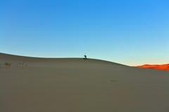 Le photographe photographiant Death Valley Images stock