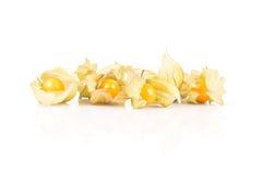 Le physalis doux et aigre porte des fruits dans la coquille ouverte sur le fond Photo libre de droits