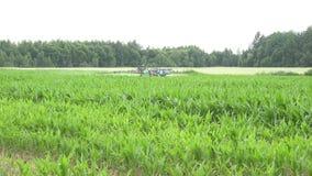 Le piante di cereale sistemano ed i prodotti chimici dello spruzzo del trattore per il raccolto proteggono 4K stock footage