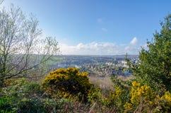 Le piante in fioritura in primavera come la città di Hastings si siede nel valler Fotografia Stock Libera da Diritti