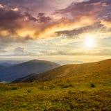Le piante selvatiche alla montagna completano al tramonto Fotografia Stock Libera da Diritti