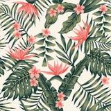 Le piante tropicali ed i fiori sottraggono giallo-chiaro senza cuciture di colori Immagine Stock Libera da Diritti