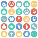 Le pied animal imprime des icônes réglées sur le fond de cercles de couleur pour le graphique et la conception web, signe simple  illustration de vecteur