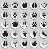 Le pied animal imprime des icônes réglées sur le fond de plats pour le graphique et la conception web, signe simple moderne de ve illustration libre de droits