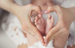 Le pied de la chéri dans des mains de mère Image stock