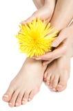 Le pied et la main de la femme Photos libres de droits