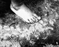 Le pied perdu Images libres de droits