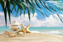 Le pietre del mare e delle stelle marine sono disposte sui precedenti di bello paesaggio del mare Fotografia Stock