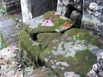 Le pietre delle rovine nel muschio Fotografia Stock