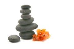 Le pietre di zen con i fiori di bouganvilla hanno isolato. Immagini Stock Libere da Diritti