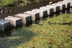 Le pietre facenti un passo attraversano una corrente Fotografia Stock