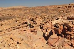 Le pietre hanno colorato il canyon Fotografie Stock Libere da Diritti