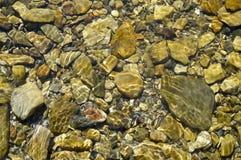 Le pietre sul fondo di fiume Variant2 fotografia stock