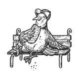 Le pigeon de colombe mangent du pain sur le vecteur de gravure de banc illustration stock