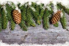 Le pin décoré s'embranche avec des cônes sur l'espace libre en bois de table Photographie stock