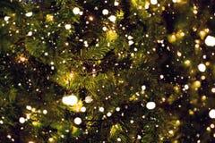 Le pin de Noël avec le bokeh léger et la neige tombent sur le fond brouillé Photos stock