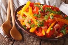 Le piperade de salade du poivre avec des tomates et les oignons se ferment  Hori Photos libres de droits