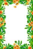 Le pissenlit d'aquarelle fleurit, fleurit cadre rectangulaire d'isolement sur le fond blanc Photos libres de droits