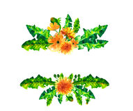 Le pissenlit de ressort d'aquarelle fleurit, fleurit cadre d'isolement sur le fond blanc Images libres de droits