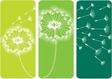 Le pissenlit fleurit des silhouettes Photo libre de droits