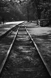 Le piste del treno hanno isolato in bianco e nero immagine stock