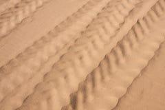 Le piste della gomma nella sabbia fine immagine stock
