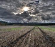 Le piste della gomma strascicano nel campo coltivato dello sbarco dell'azienda agricola Fotografia Stock Libera da Diritti