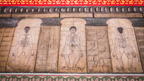 Le pitture dal tempio Wat Pho insegnano all'agopuntura ed alla medicina dell'Estremo Oriente Immagini Stock Libere da Diritti