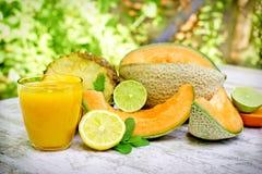 Le plaisir avec du jus délicieux en jours chauds d'été Image stock