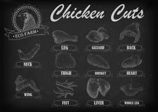 Le plan de viande de coupe de poule de poulet partie l'aile de cou de poitrine de carcasse illustration stock
