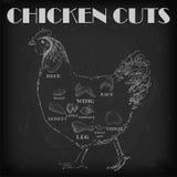 Le plan de viande de coupe de poule de poulet partie l'aile de cou de poitrine de carcasse illustration de vecteur