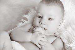 Le plan rapproché bébé garçon doux de portrait du petit, recherchant, noircissent Photos libres de droits