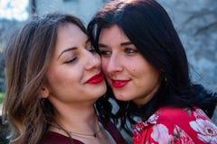 Le plan rapproché de deux amis lesbiens avec leurs joues se reposant, une blonde et l'autre brune regardent attentivement de chac photos stock