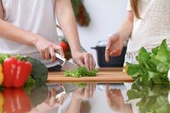 Le plan rapproché de deux femmes font cuire dans une cuisine Amis ayant l'amusement tout en préparant la salade fraîche Image libre de droits
