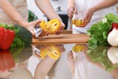 Le plan rapproché de deux femmes font cuire dans une cuisine Amis ayant l'amusement tout en préparant la salade fraîche Photo libre de droits
