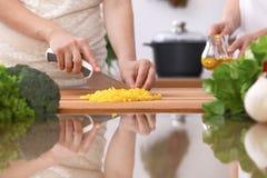 Le plan rapproché de deux femmes font cuire dans une cuisine Amis ayant l'amusement tout en préparant la salade fraîche Photographie stock libre de droits
