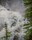 Le plan rapproché de l'eau circulant sur Athabasca tombe en Jasper National Park dans le Canada Photos stock