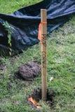 Le plan rapproché de l'enjeu en bois en terre avec le coin orange de bande et de propriété a marqué là-dessus près de la barrière photos stock