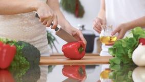 Le plan rapproché de quatre mains humaines font cuire dans une cuisine Amis ayant l'amusement tout en préparant la salade fraîche Photo libre de droits