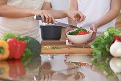 Le plan rapproché de quatre mains humaines font cuire dans une cuisine Amis ayant l'amusement tout en préparant la salade fraîche Images libres de droits