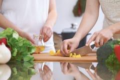 Le plan rapproché de quatre mains humaines font cuire dans une cuisine Amis ayant l'amusement tout en préparant la salade fraîche Images stock