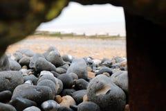 Le plan rapproché des cailloux lisses a lavé sur la plage photo libre de droits